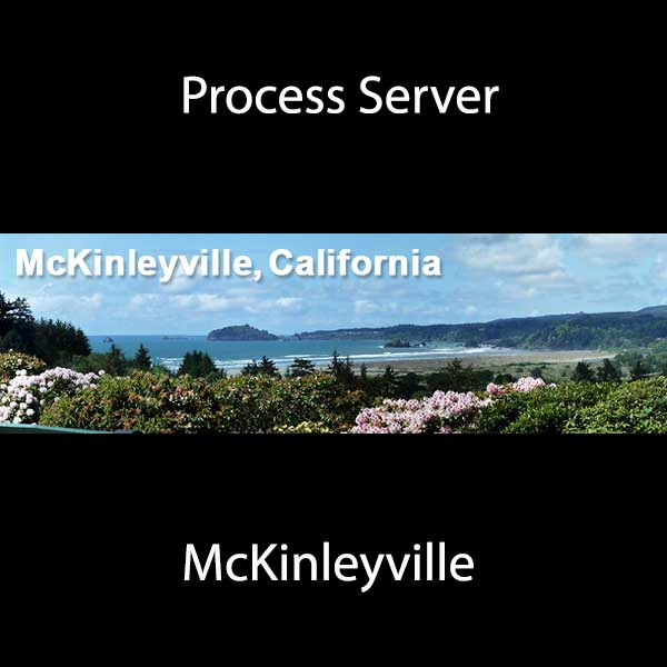 Process Server McKinleyville