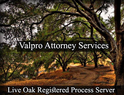 Live Oak Registered Process Server