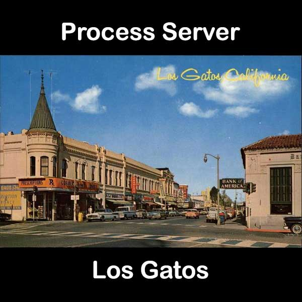 Process Server Los Gatos