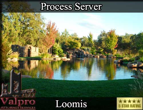 Process Server Loomis