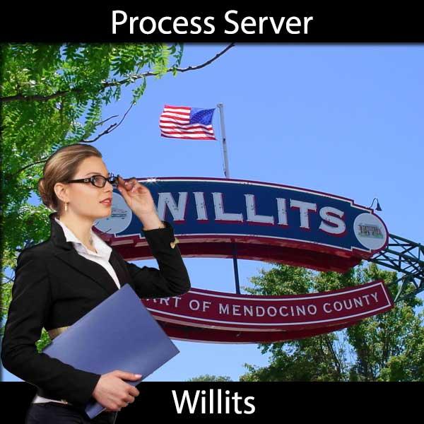 Process Server Willits