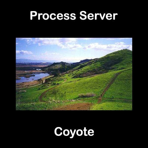Process Server Coyote