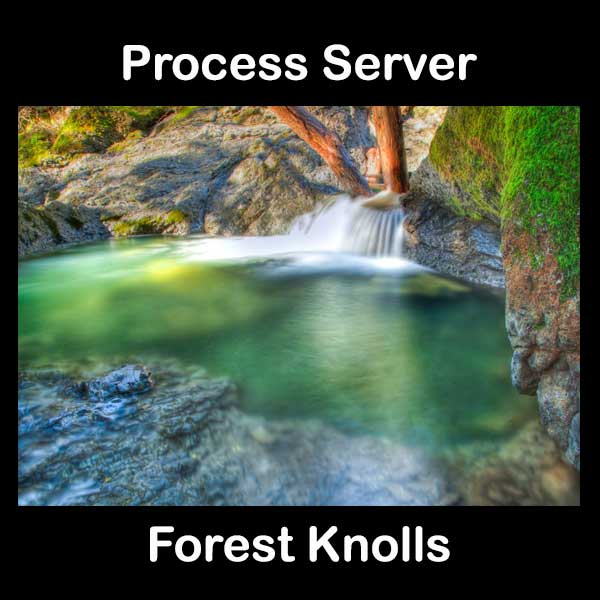 Process Server Forest Knolls