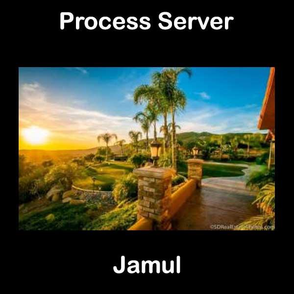 Process Server Jamul