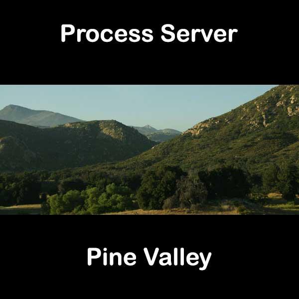 Process Server Pine Valley