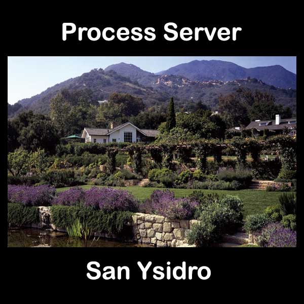 Process Server San Ysidro