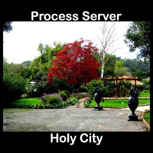Process Server Holy City