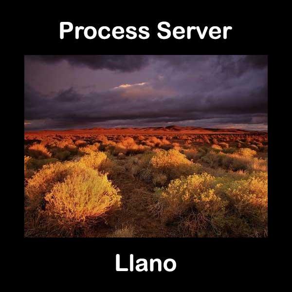 Process Server Llano