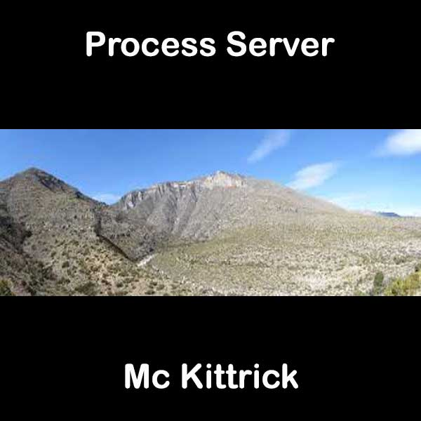 Process Server Mc Kittrick