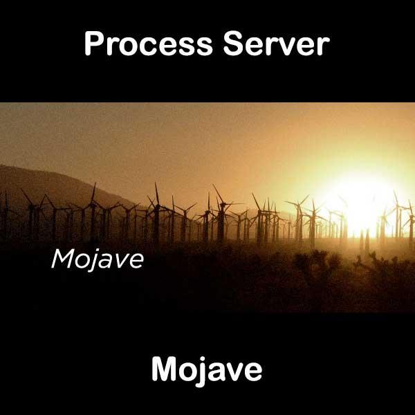 Process Server Mojave