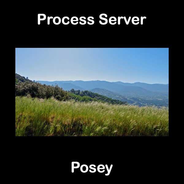 Process Server Posey
