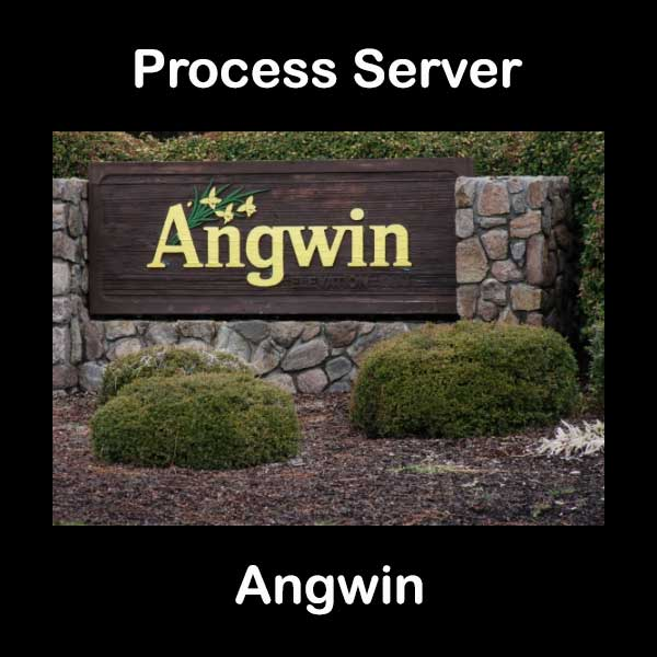 Process Server Angwin