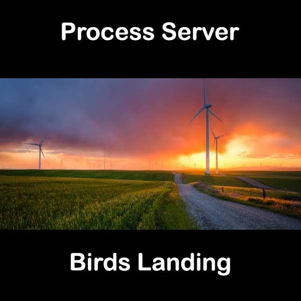 Process Server Birds Landing