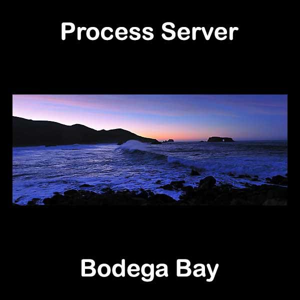 Process Server Bodega Bay