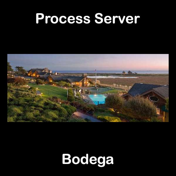 Process Server Bodega