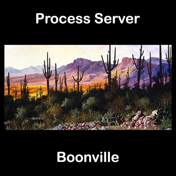 Process Server Boonville