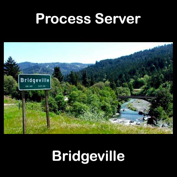 Process Server Bridgeville