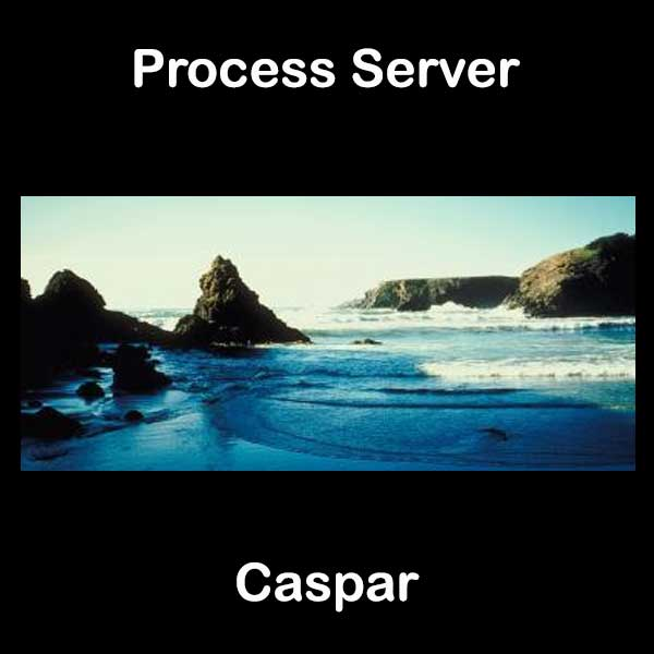 Process Server Caspar