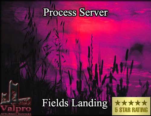 Process Server Fields Landing