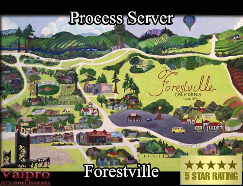 Process Server Forestville
