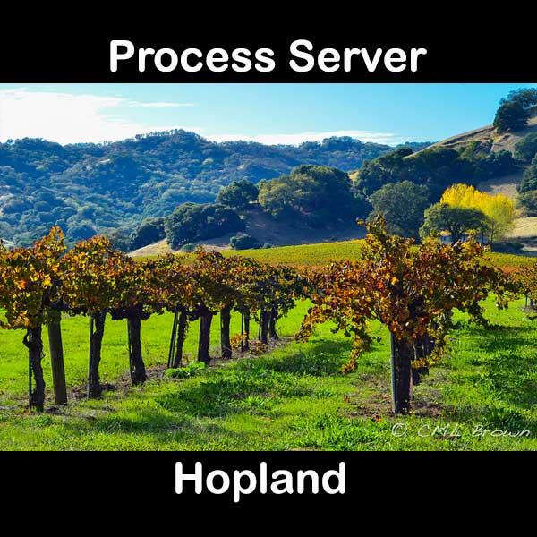 Process Server Hopland