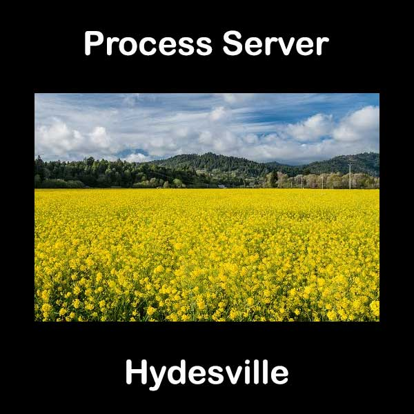 Process Server Hydesville