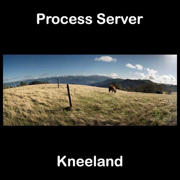 Process Server Kneeland