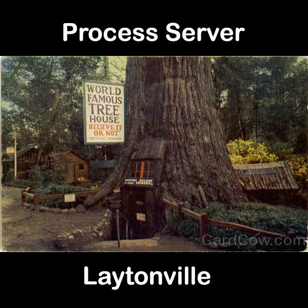 Process Server Laytonville