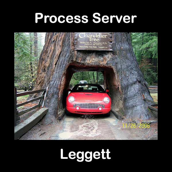 Process Server Leggett