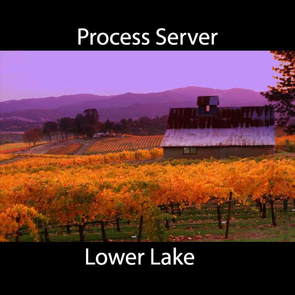 Process Server Lower Lake