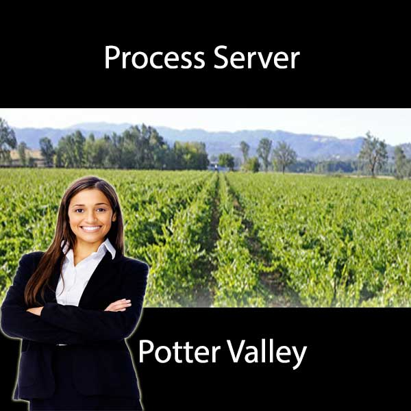 Process Server Potter Valley