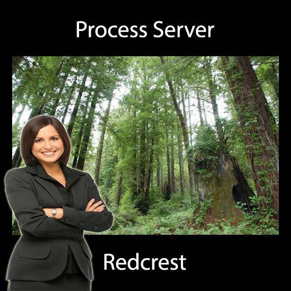 Process Server Redcrest