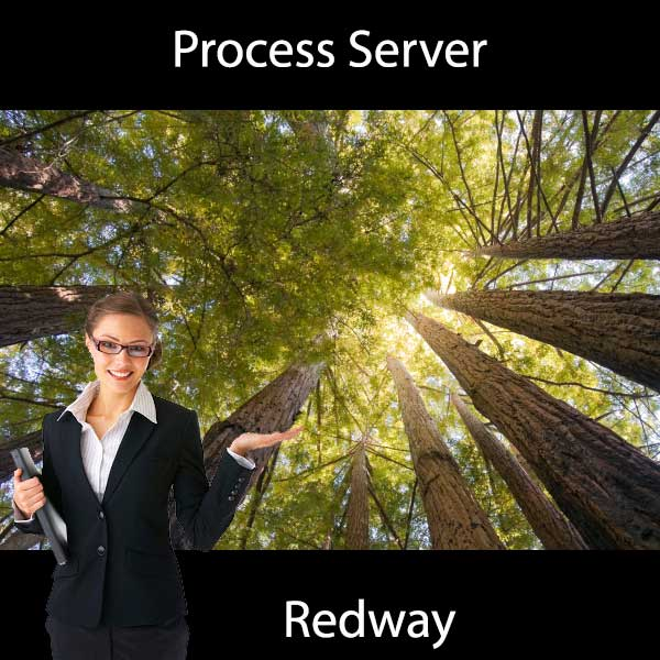 Process Server Redway