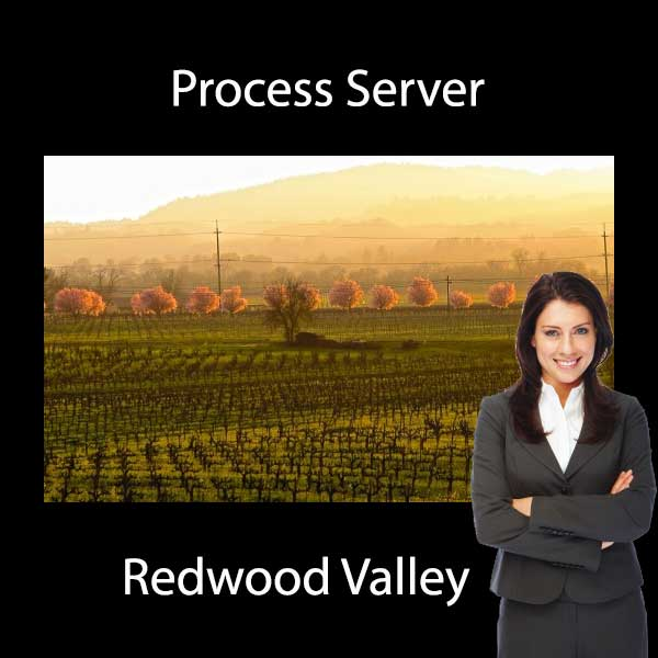 Process Server Redwood Valley