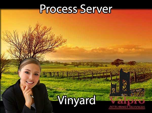 Process Server Vinyard