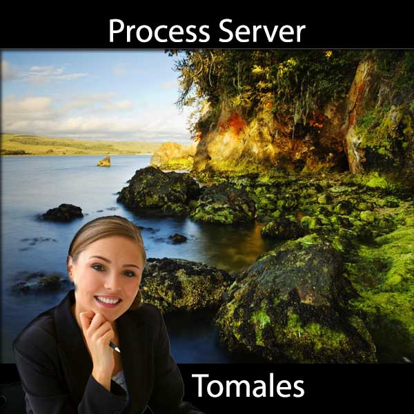 Process Server Tomales