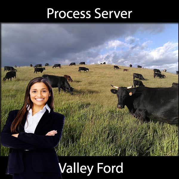Process Server Valley Ford