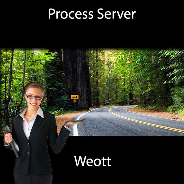 Process Server Weott