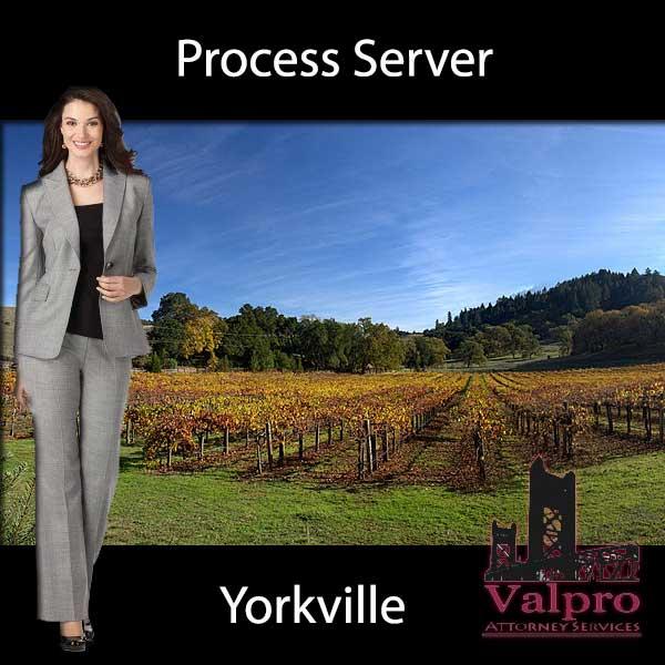 Process Server Yorkville