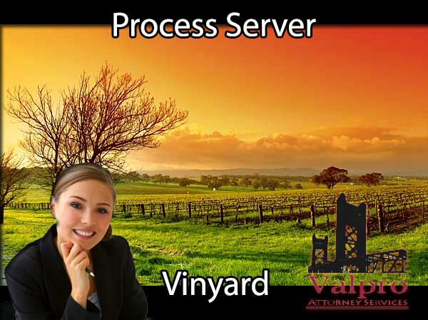 Process Server Vineyard