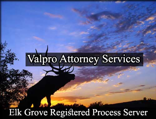 Registered Process Server in Elk Grove