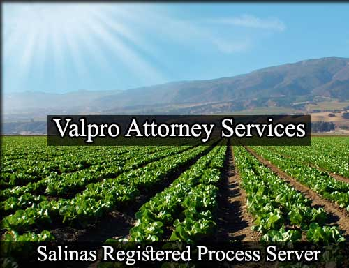 Registered Process Server in Salinas