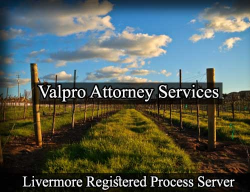 Registered Process Server in Livermore