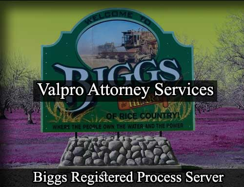 Registered Process Server in Biggs