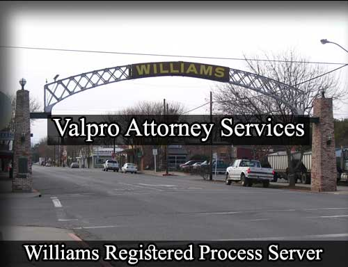 Registered Process Server in Williams