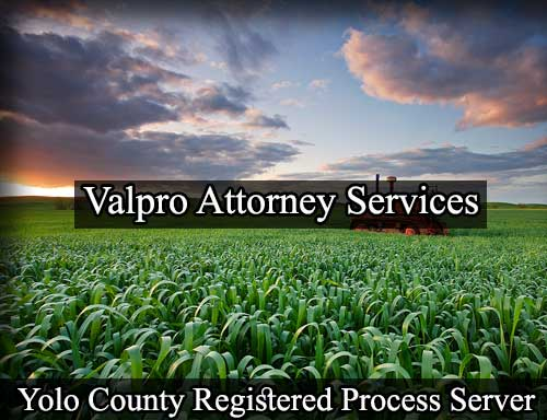 Registered Process Server in Yolo County