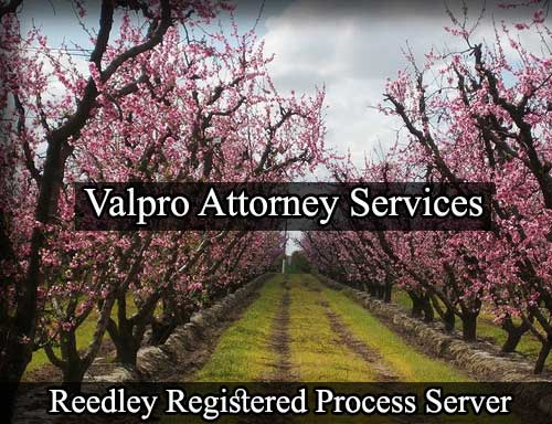 Registered Process Server in Reedley