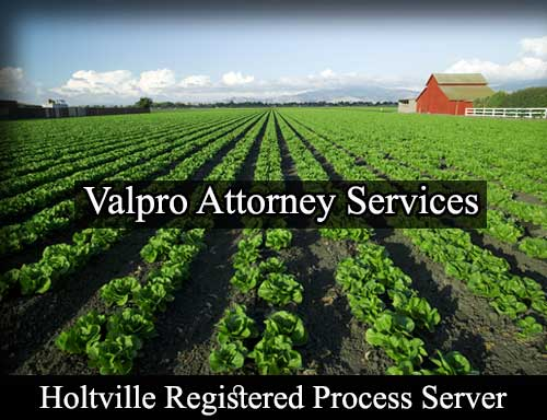 Registered Process Server Holtville