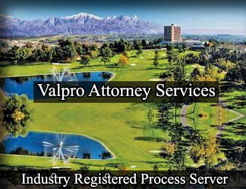 Registered Process Server Industry