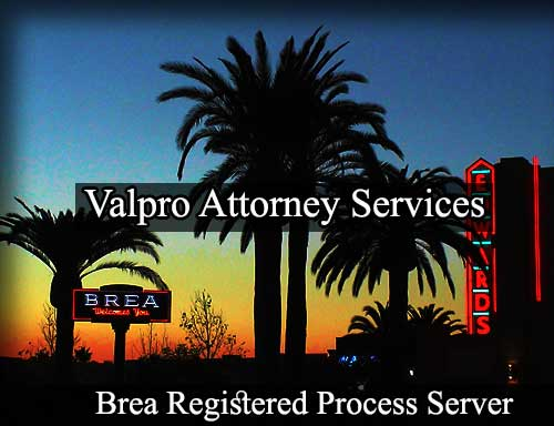 Brea California Registered Process Server